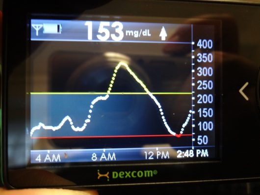 Dexcom graph showing my BG variability during the test.