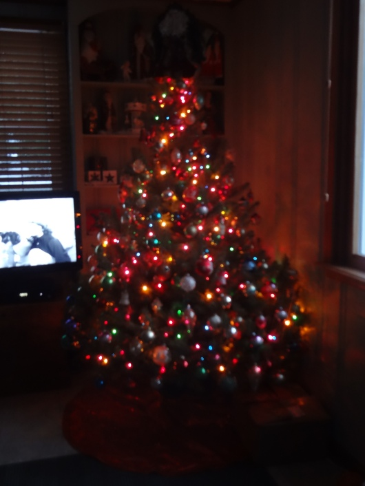 This year's Christmas tree.